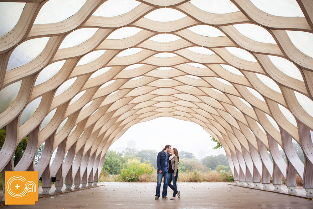 Lincoln Park Honeycomb Sculpture